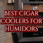 Best Cigar Coolers for Humidors