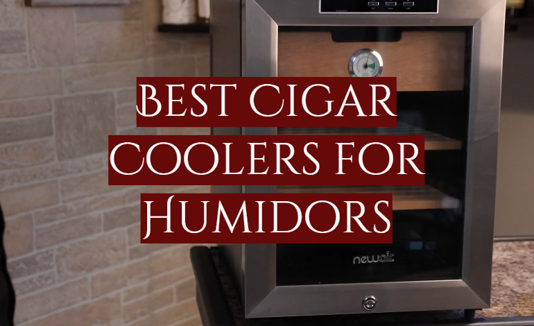 5 Best Cigar Coolers for Humidors
