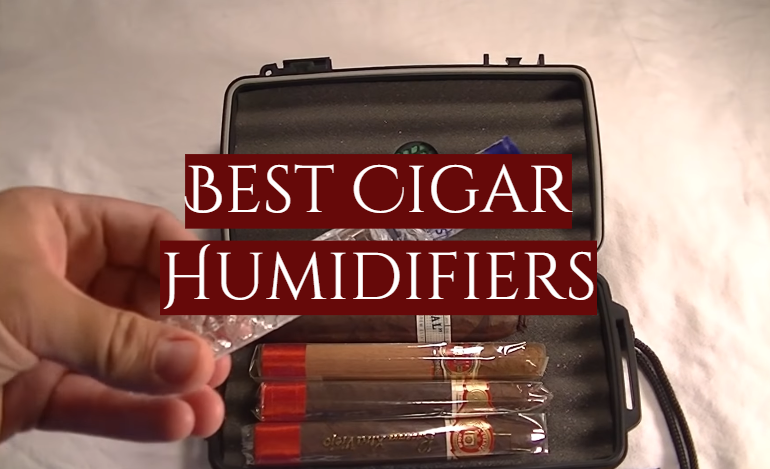 5 Best Cigar Humidifiers