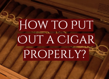 How to Put Out a Cigar Properly?