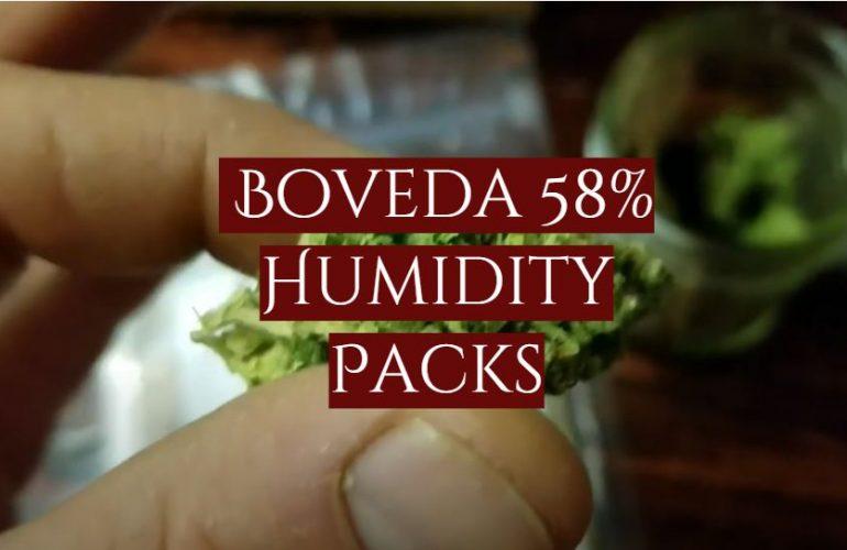 Boveda 58% Humidity Packs Review