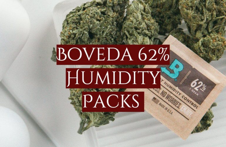 Boveda 62% Humidity Packs Review